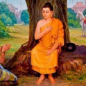 Sangha358's picture