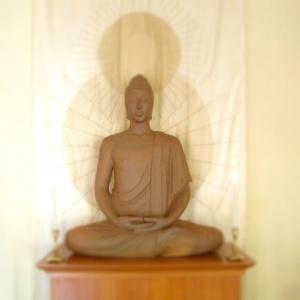 Auckland Buddha