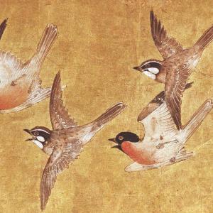 Free the Dharma