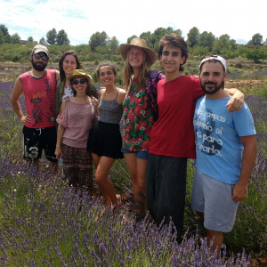 Stopping by in lavender fields