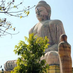 The Giant Buddha 1