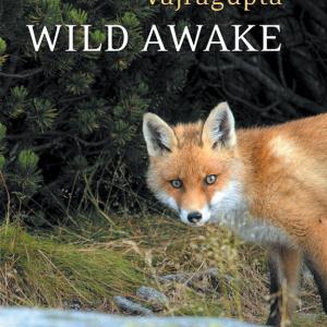 Vajragupta's 'Wild Awake'